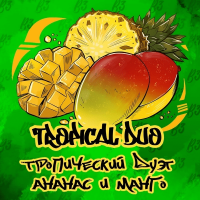 табак для кальяна b3_tropical duo (б3 ананас и манго)