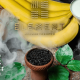 element_banana-daiquiri