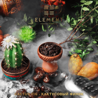 element_cactus fig