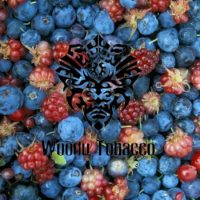 woodu_forest berry